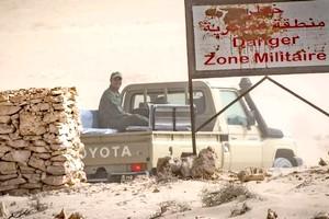 Le Maroc choisit le Sahara occidental pour y organiser des manœuvres militaires avec les Etats-Unis