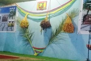 Tidjikja : la ville vibre au rythme de Leyali El Guetna, la traditionnelle fête des dattes