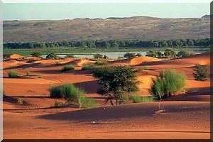 Mauritanie: la réduction de la taxe sur le visa désormais effective