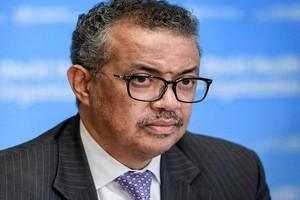 COVID-19 « Ne gaspillons pas les sacrifices de 2020 », prévient le patron de l'OMS