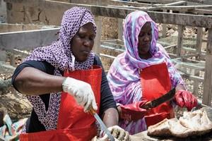 L'économie mauritanienne fortement impactée par le coronavirus