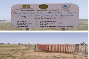 Les abus liés à l'ordre féodal à Dafor autour d'un périmètre pastoral : lettre d'alerte et d'information