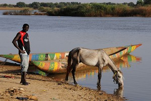 Mauritanie : Booster le dأ©veloppement أ©conomique du Sud