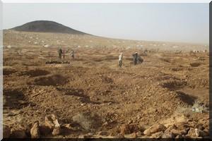 L'effondrement d'un puits d'orpaillage fait cinq morts dans la zone de Tasiast