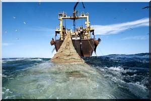 La banque mondiale met en garde la Mauritanie contre une exploitation excessive de sa ressource halieutique
