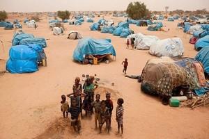Mali/ Camp de M'Berra en Mauritanie : Près de 400 déplacés maliens accueillis