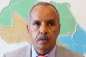 Mauritanie : Deuxième acte du projet politique d'Aziz