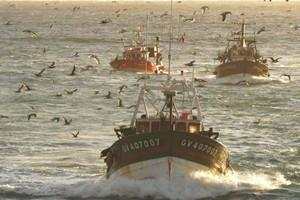 Renouvellement de l'accord de pêche mauritano-européen