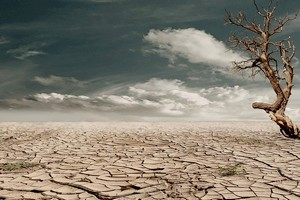Afrique : le PAM signe une nouvelle police d'assurance contre les risques climatiques