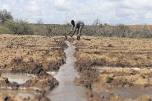 Agriculture : la Mauritanie mise sur une station de pompage sur le fleuve Sénégal