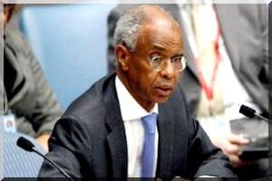 Mauritanie : Les changements des symboles du pays critiqués