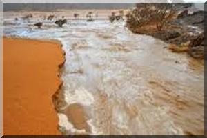 Urgent | Ain Ehl Taya emportée par les torrents