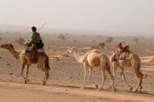 Monde rural : risques de lendemains difficiles et menace pressante de la sécheresse