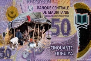 L'équation qui empoisonne l'économie mauritanienne : R = C + E . Par Pr ELY Mustapha