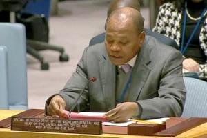 ONU : le Sénégal est capable d'organiser des élections démocratiques