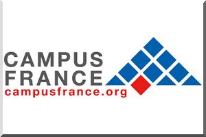 Réunion d'information Etudes en France - Samedi 14 janvier 15h30 à l' IFM
