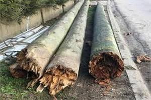 Atar : la chute des poteaux électriques provoque la panne des forages qui alimentent la ville en eau potable