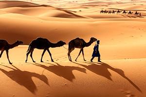 Mauritanie : 40 journalistes français arrivent à Atar pour booster l'image du tourisme national