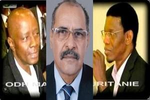 Tentative d'incursion dans le « débat » Ould Vaïda-FLAM
