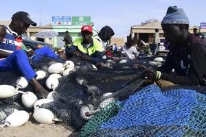 Mauritanie: les pêcheurs protestent contre les insuffisances du port de Tanit