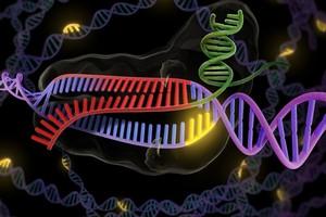 Chine: Un scientifique annonce avoir fait naître les deux premiers bébés aux gènes modifiés