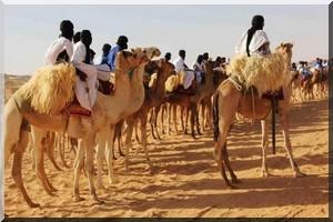Mauritanie: le Festival des villes anciennes, moment de rare communion