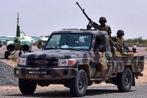 280 djihadistes tués au Niger