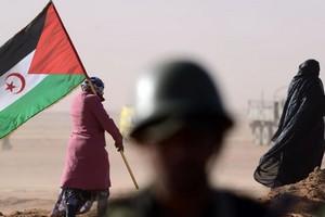 Le Front Polisario et le Hezbollah démentent les accusations du Maroc