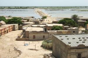 Dégradations environnementales à N'Diago: Les populations tirent la sonnette d'alarme