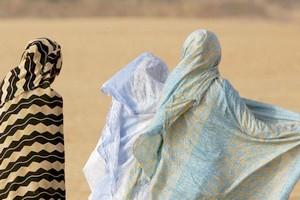 La Mauritanie privée d'une loi pour lutter contre les violences faites aux femmes