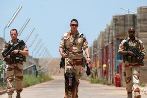 Défense: que fait l'armée française en Afrique?