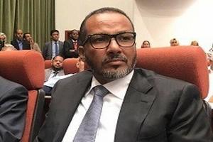 Mauritanie-Economie-Médias: Le patron des patrons a-t-il transféré  via sa banque un pactole  à l'ancien président?