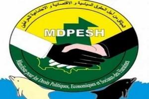 Mauritanie : le manifeste des Haratines demande aux partis politiques de tenir compte des diversités lors des candidatures