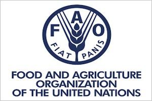 5000 hectares de terres dégradées seront réhabilitées par la FAO, en Mauritanie, au soudan et en Erythrée