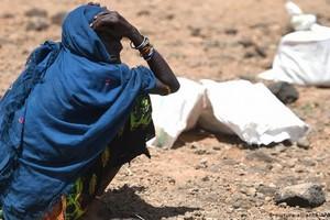 Situation humanitaire critique dans le Sahel