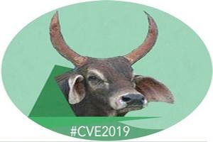 La CVE répond à la volonté exprimée par sa base et affiche ses ambitions (Communiqué de presse)