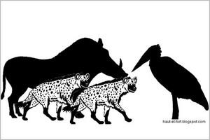 Le marabout et le phacochère. Par Pr ELY Mustapha