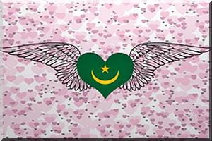 Débat réactualisé:Genèse de la question ethnique et raciale en Mauritanie ou genèse d'une agression: Réponse à Mariella Villasante, l'auteur de chronique politique de la Mauritanie