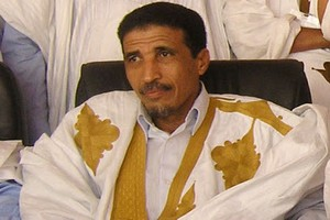 Mohamed Ould Maouloud : les ministres font