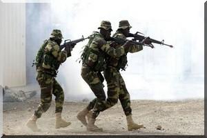 ALERTE - Les troupes sénégalaises sont entrées en Gambie (porte-parole de l'armée)