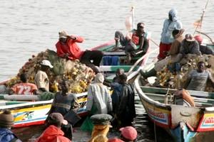 Crise au niveau de la pêche artisanale, rareté du poisson et hausse des prix à Nouakchott