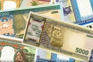 Mauritanie : 8,8 milliards F CFA de bons du trésor vendus