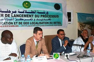 Mauritanie : nouvelles mesures envisagées pour moderniser l'élevage
