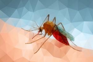 Rosso : Des décès suite à une épidémie de fièvre (Presse)