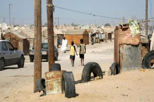 Nouakchott : Une gamine tuée par des chiens errants