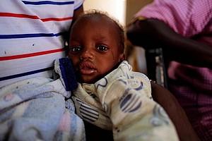L'Afrique de l'Ouest connaît la crise alimentaire « la plus grave de ces dernières décennies »
