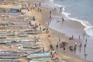 Mauritanie : Mauvaise pêche