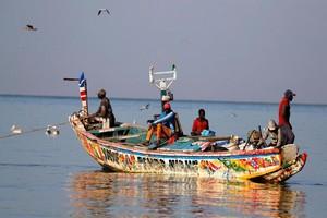 Un député sénégalais : Negocier avec la Mauritanie est plus avantageux qu'avec l'Union européenne