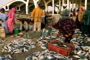Accords de pêche Mauritanie-Sénégal : Poissons contre Opposants