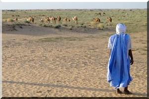 La Mauritanie baisse le prix des visas